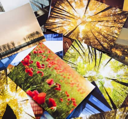 Postkarten-Direct-Mailings sind ein effektiver Weg, Ihre Kunden zu erreichen – wir zeigen Ihnen, wie Mailings funktionieren und worauf Sie achten müssen.