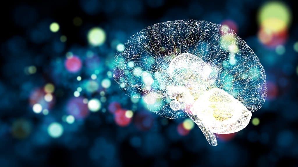 Multisensorisches Eventmarketing erreicht verschiedene Gehirnregionen und alle Sinne.